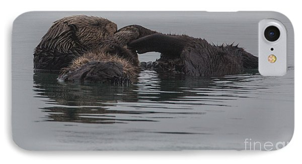 Sleeping Otter B2110 IPhone Case