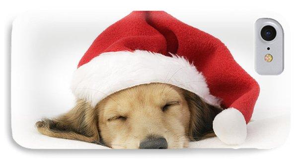 Sleeping Santa Puppy IPhone Case by Greg Cuddiford