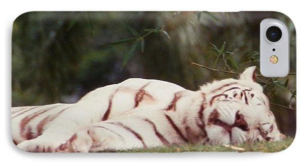Sleeping White Snow Tiger IPhone Case by Belinda Lee