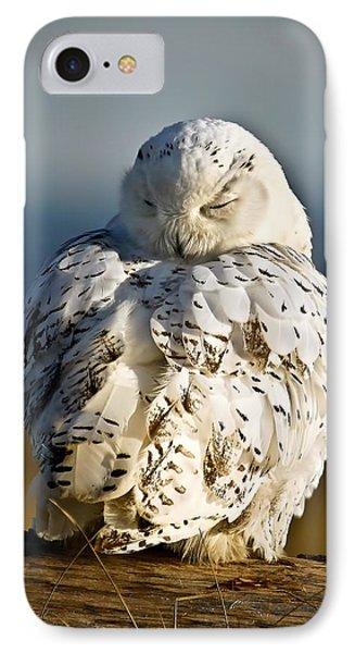 Sleeping Snowy Owl IPhone Case by Steve McKinzie