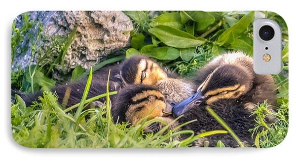 Sleepy Ducklings IPhone Case by Rob Sellers