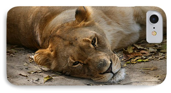 IPhone Case featuring the photograph Sleepy Lioness by Ann Lauwers