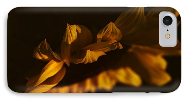 Sleepy Sunflower IPhone Case by The Forests Edge Photography - Diane Sandoval