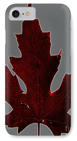 Slender And Pretty Phone Case by Tina M Wenger