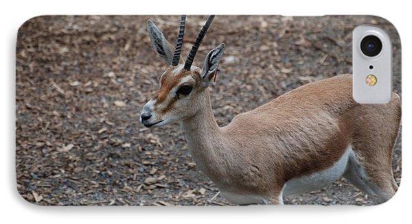 Slender Horned Gazelle IPhone Case by DejaVu Designs