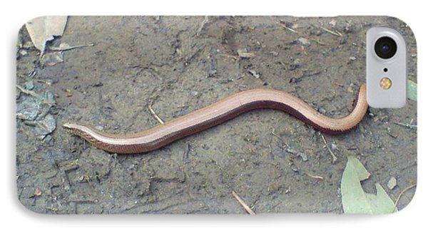 IPhone Case featuring the photograph Slow Worm by John Williams