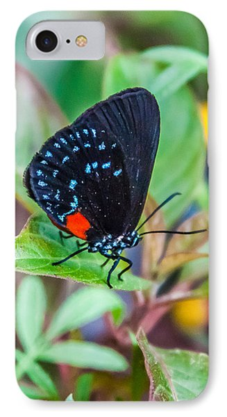 Small Black With Blue Spots IPhone Case by Karen Stephenson