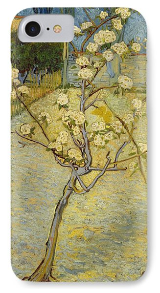 Small Pear Tree In Blossom IPhone Case