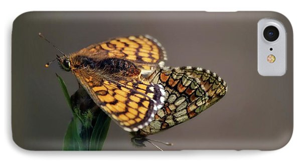 Small Pearl-bordered Fritillary Mating IPhone Case by Heiti Paves
