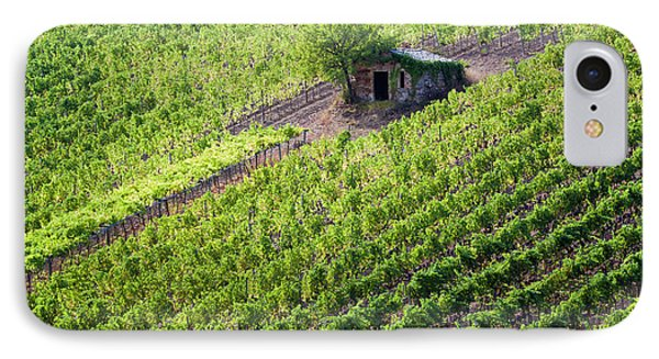 Small Rock Shed In The Vineyards IPhone Case by Terry Eggers