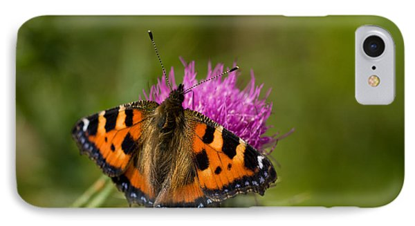 IPhone Case featuring the photograph Small Tortoiseshell Butterfly by Liz  Alderdice