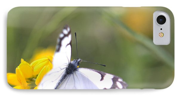 IPhone Case featuring the photograph Small White Butterfly On Yellow Flower by Belinda Greb