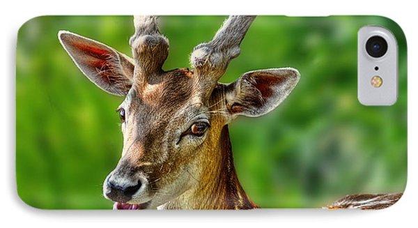 Smiling Deer IPhone Case