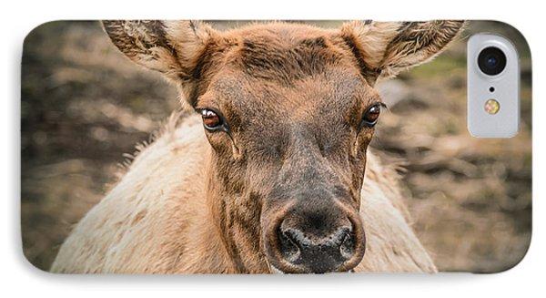 Smiling Elk Phone Case by LeeAnn McLaneGoetz McLaneGoetzStudioLLCcom