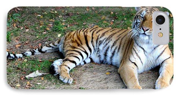 Smiling Tiger IPhone Case