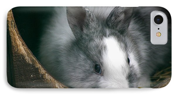 Smokey IPhone Case by Living Color Photography Lorraine Lynch