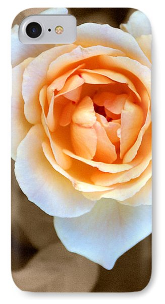 Smooth Angel Rose IPhone Case