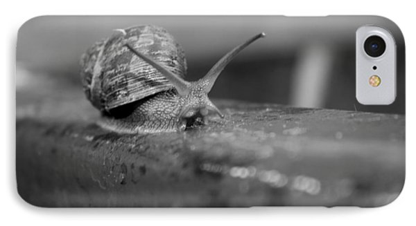 Snail IPhone Case by Lora Lee Chapman