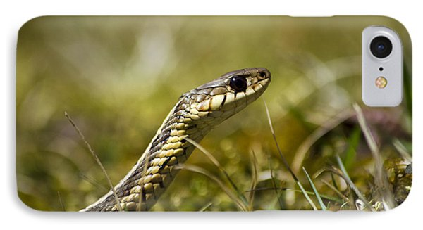 Snake Encounter IPhone Case by Christina Rollo