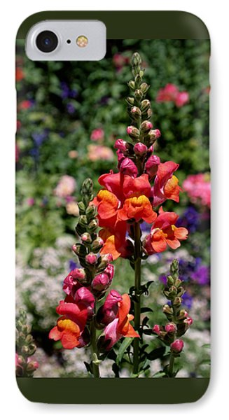 Snapdragons IPhone Case by Rona Black