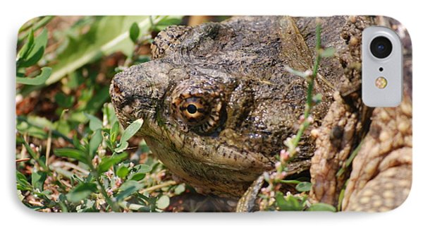 IPhone Case featuring the photograph Snapping Turtle Head by Mark McReynolds