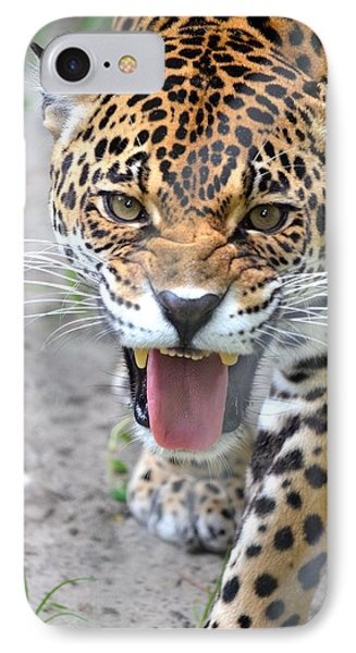 Snarling Jaguar  IPhone Case by Richard Bryce and Family