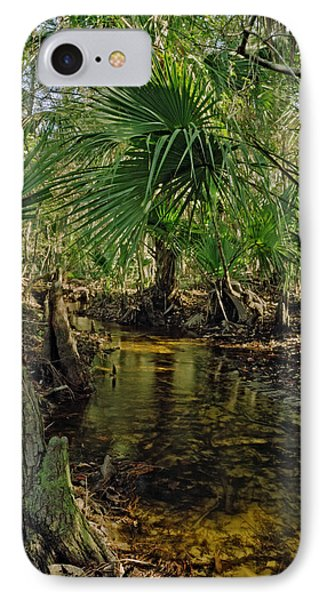 Snell Creek. Osceola County Florida IPhone Case