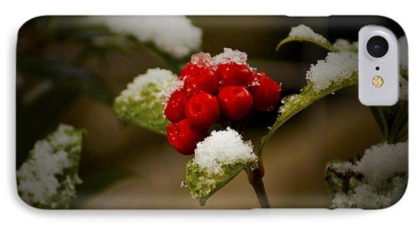 Snow And Berries Phone Case by Ron Roberts
