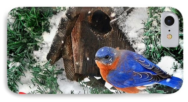 Snow Bluebird Christmas Card IPhone Case