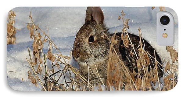 Snow Bunny IPhone Case