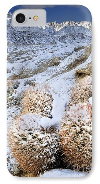 IPhone Case featuring the photograph Snow Covered Cactus Below Mount Whitney Eastern Sierras by Dave Welling