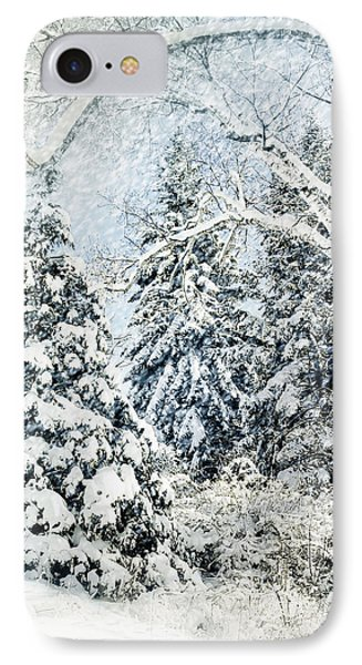 Snow Covered  IPhone Case by Elaine Manley