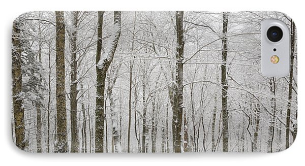 Snow-covered Forest - Franconia New Hampshire Usa IPhone Case by Erin Paul Donovan