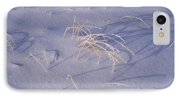 Snow Covered Grass On South Rim, Crater IPhone Case by Panoramic Images
