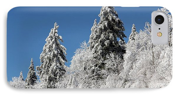 Snow Covered Red Spruce IPhone Case