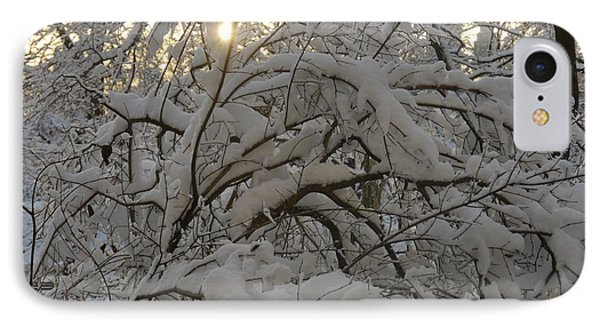 IPhone Case featuring the photograph Snow Covered Tree And Sun by Winifred Butler