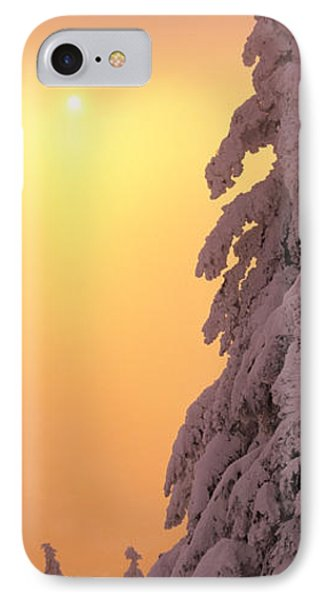 Snow Covered Tree In Winter At Sunset IPhone Case by Panoramic Images