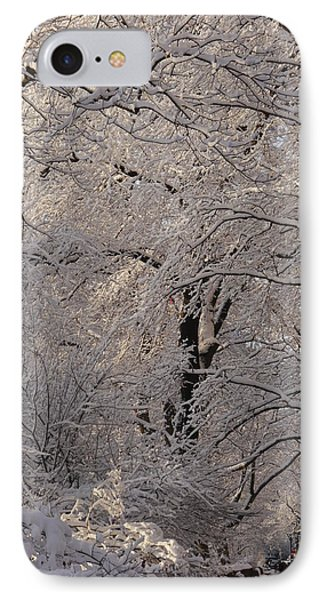 IPhone Case featuring the photograph Snow Covered Trees On Central Park West by Winifred Butler