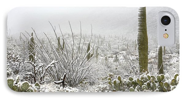 Snow Day In The Desert  IPhone Case
