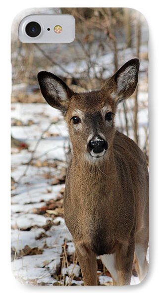 IPhone Case featuring the photograph Snow Deer by Lorna Rogers Photography