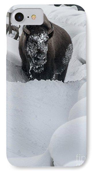 Snow Face IPhone Case