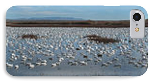 Snow Geese Bosque Phone Case by Steven Ralser