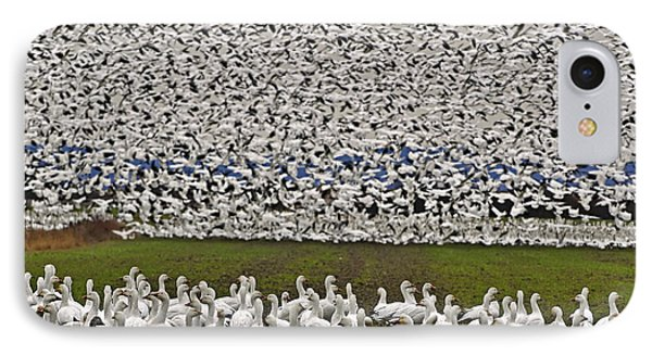 IPhone Case featuring the photograph Snow Geese By The Thousands by Valerie Garner