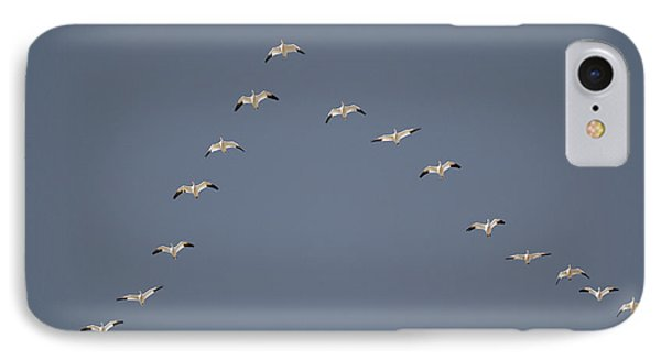 Snow Geese Flying In V Formation IPhone Case