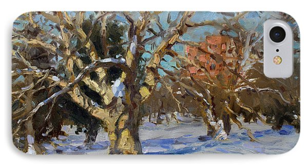Snow In Goat Island Park  IPhone Case by Ylli Haruni