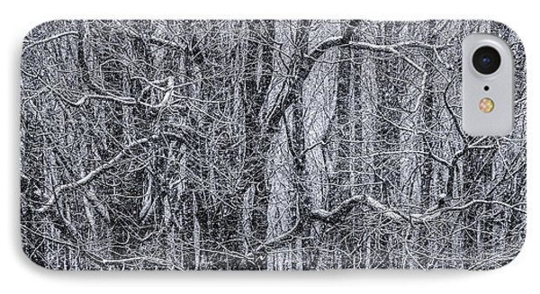Snow In The Forest Phone Case by Diane Diederich