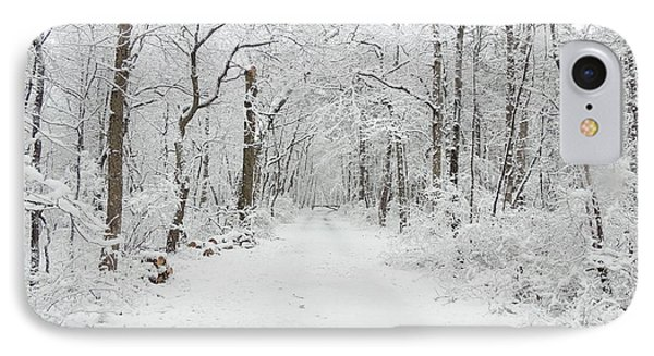 Snow In The Park Phone Case by Raymond Salani III