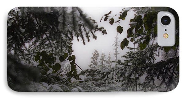IPhone Case featuring the photograph Snow In Trees At Narada Falls by Greg Reed