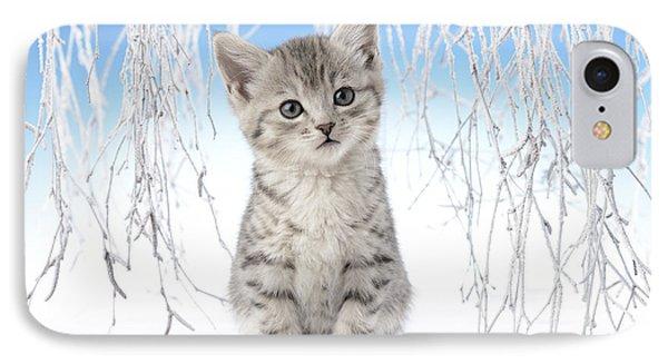 Snow Kitten IPhone Case by Greg Cuddiford
