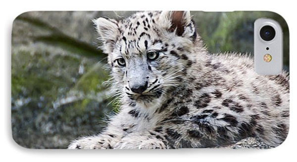 IPhone Case featuring the photograph Snow Leopard Cub by Chris Boulton